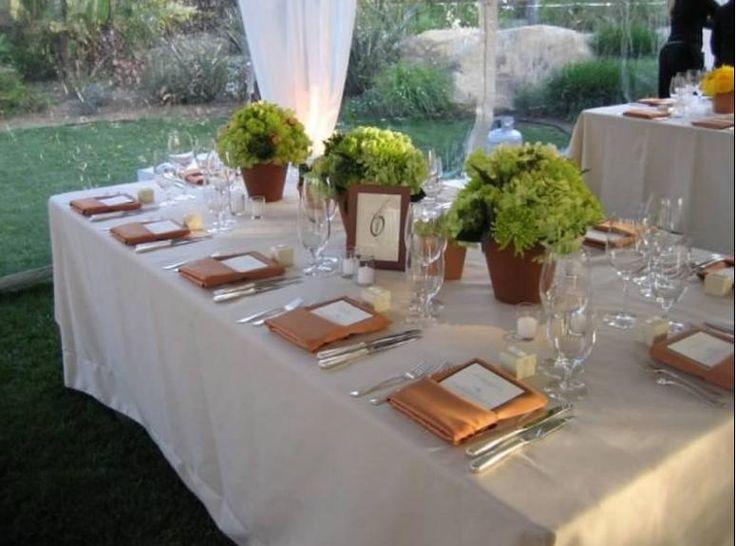 Secrets to Great Backyard Weddings