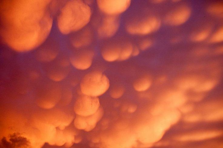 """Les mammatus ou """"mama"""" (du mot latin signifiant """"mamelle"""") sont des nuages circulaires souvent associés à des orages. Sur cette photo, le soleil couchant les teinte d'un orange vif."""