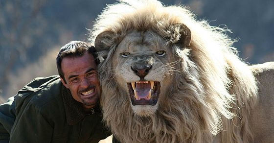 Kevin Richardson is a South African zookeeper who's renowned for being so up close and intimate with lions that he has been accepted into several prides.