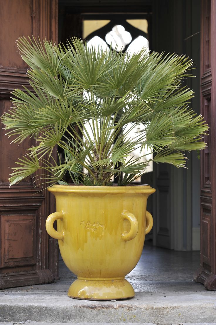 This Anduze 4 Handle Planter Jaune gives life to this ...