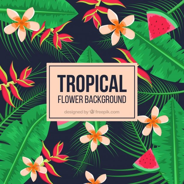 Tropical background with vegetation and watermelon #Free #Vector  #Background #Flower #Floral #Flowers #Nature #Floralbackground #Leaves #Tropical #Backdrop #Plant #Flowerbackground #Natural #Naturebackground #Palm #Watermelon #Blossom #Beautiful #Tropicalflowers #Wild #Backgroundflowers