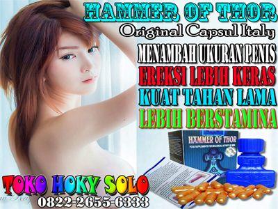 25 best 0822 2655 6333 agen hammer of thor asli di papua barat