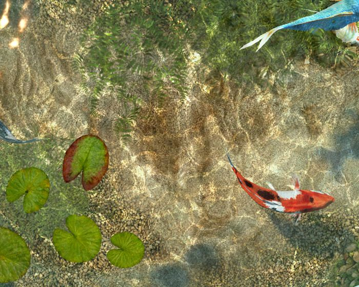 25 best images about fish screensaver on pinterest for Virtual koi fish pond