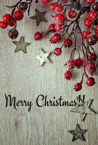 Merry Christmas Greetings funny holidays. Amidst the soulful Christmas carols, may this season grant you many uncountable wishes and may your heart be full of contentment.
