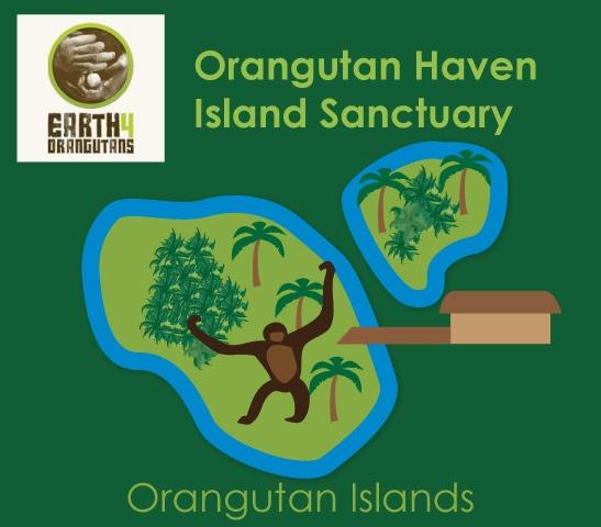 www.earth4orangutan.com