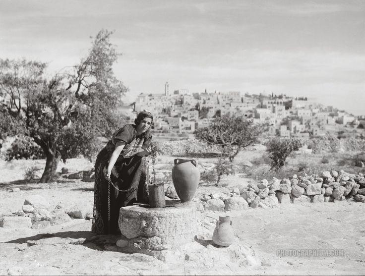Palestine (undated)                                                            فلسطين