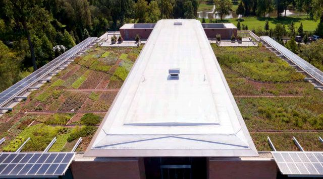 Jardín Botánico de Chicago: evaluación de plantas para azoteas verdes.The Green Roof Garden | El Blog de La Tabla