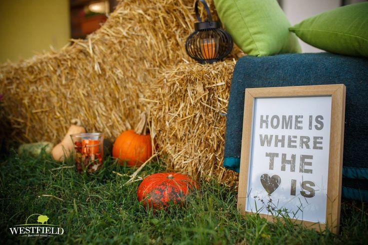 Detalii de toamnă în Westfield  #Home #love #westfieldArad #bestplaceintown #residential #autumn #decor #pumpkin