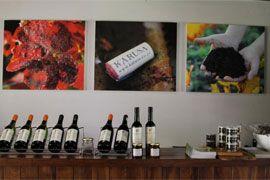 Karusa Vineyards, Wine Tasting & Micro-Brewery, Oudtshoorn