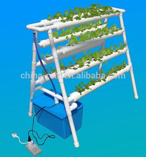 Double Lines Hydroponics System For Home/ Indoor Grow Kit , Find Complete Details about Double Lines Hydroponics System For Home/ Indoor Grow Kit,Hydroponic Systems For Sale,Hydroponics System Vertical,Commercial Hydroponic Systems from -Hefei Reiz Innovative Tech. Co., Ltd. Supplier or Manufacturer on Alibaba.com