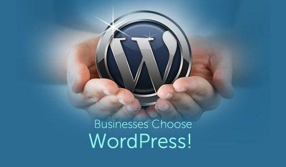 Owners of highly profitable businesses including notable brands are relying on WordPress Web Development. Read the article to know why it is so reliable.