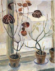 Aino von Boehm (Finnish: 1892 - 1939)