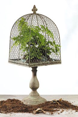 """Tuscany Topiary Pedestal Chicken Wire Stand 10""""x27"""
