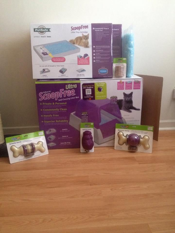 Petsafe Products Review