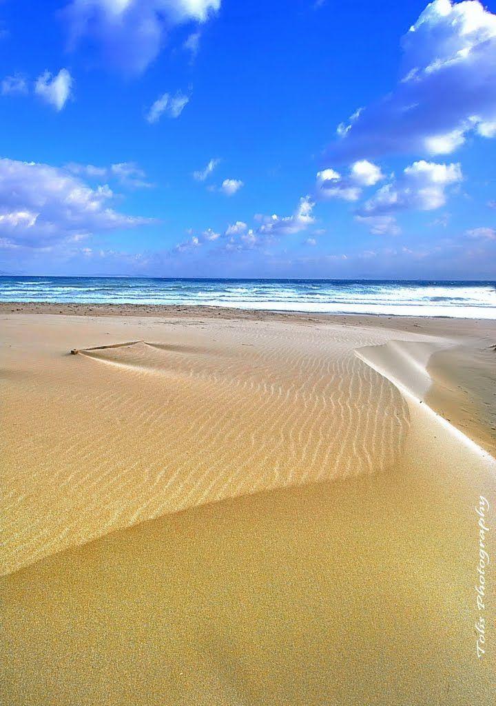 Dunes Karfas beach Chios Greece