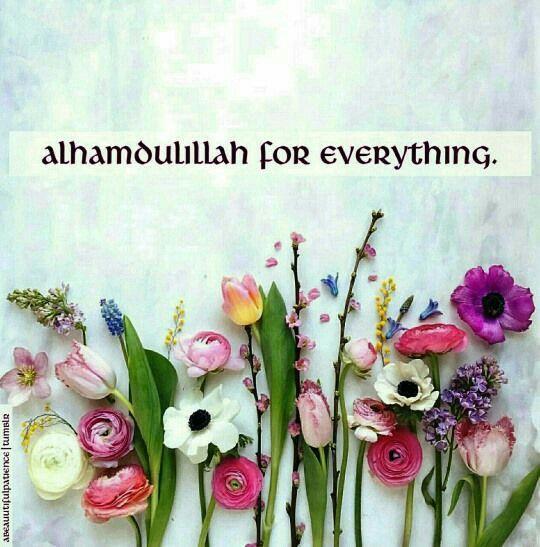 Alhamdulillah More