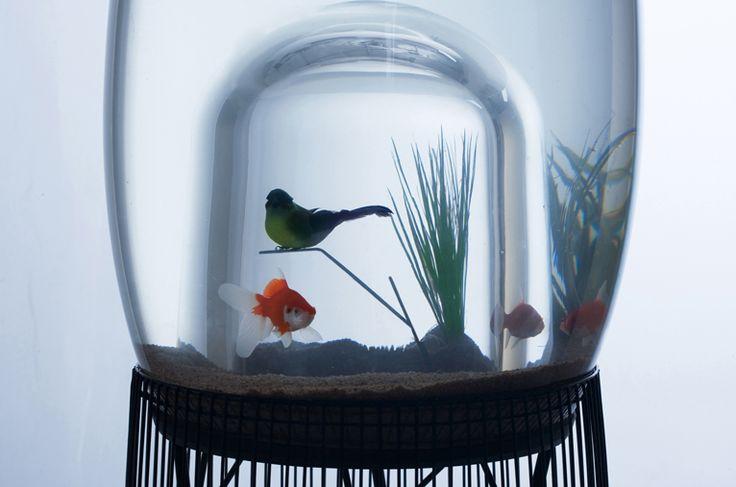 cage à poiseaux, cage à oispon #marieneirynck  #constance guisset