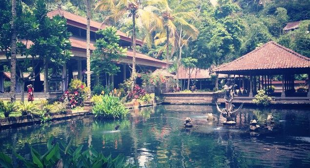 5 Amazing Bali Hotels under $100!