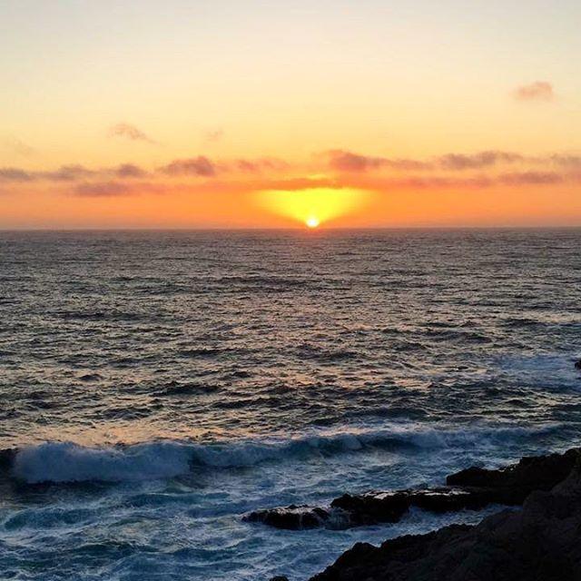 Good morning! Hope you had a fantastic weekend ☀️ // Jó reggelt! Remélem mindenkinek csodás hétvégéje volt ☀️ #szegedbudokan #martialarts #academy #szeged #budokan #monday #morning #sunrise #inspiration #california #throwback #asilomar #beach #pacific #ocean #water #nature #newyear #action #motivation #cali #usa #monterey #mylife #lovewhatyoudo