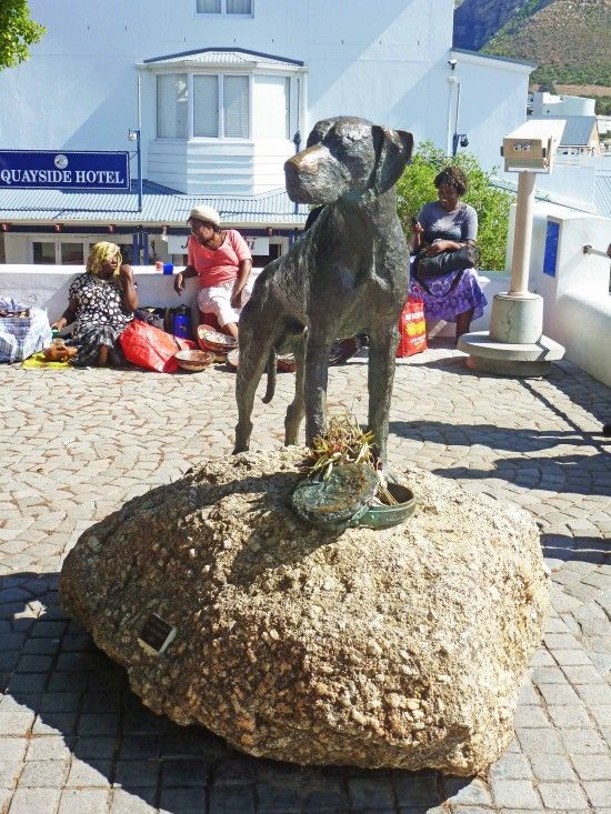 http://www.rhinoafrica.com/blog/2013/04/16/simons-town/ | Just Nuisance, the Great Dane