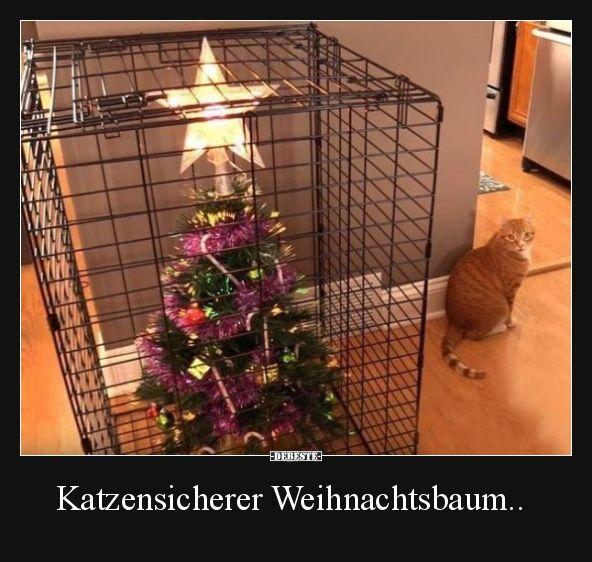 Katzensicherer Weihnachtsbaum..