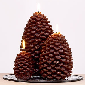 Pine Cones...Photos, Cones Candles, Seasons, Marketing, Candle Holders, Candles Holders, Holiday Stuff, Pinecone Candles World, Pine Cones And