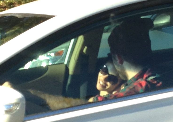 Rob and Twiggs driving around in LA 9-22-14. A closer look at the forehead kiss!