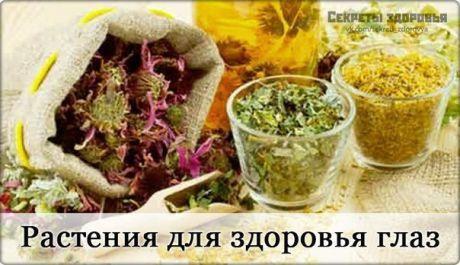 Интересные новости    Лекарственными растениями можно лечить практически все заболевания глаз!