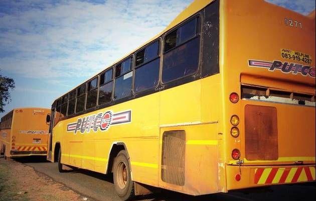 Bid to tackle Gauteng bus transport woes