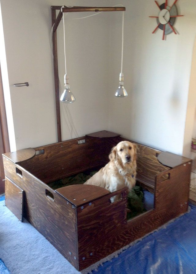 Best 25 Whelping Box Ideas On Pinterest
