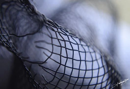 Mesh of a sieve