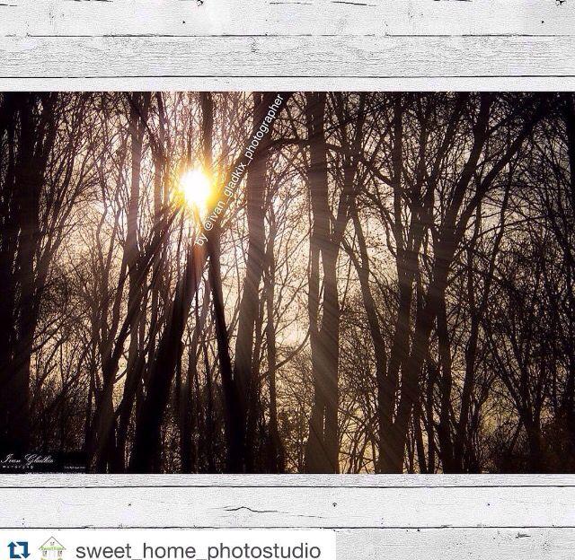 Напоминаю, что мы открыли новое направление в нашей фотостудиидобро пожаловать! Repost @sweet_home_photostudio ・・・ Природа, еда, портреты, семейное фото, свадебное... - печатаем фотокартины на холсте и не только! Помогаем подобрать фотокартину, в соответствии с дизайном интерьера Вашего дома➡️Приём заказов: sweethomephotostudio@mail.ru ⬅️ #фотокартины#фотограф#фотографРоссия#модульныекартины#картины#природа#лес#фото#фотоназаказ#интерьер#дизайнинтерьера#декор#Краснодар#Воронеж#Севас