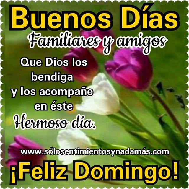 Buenos Dias Familiares Y Amigos Feliz Domingo Feliz Viernes