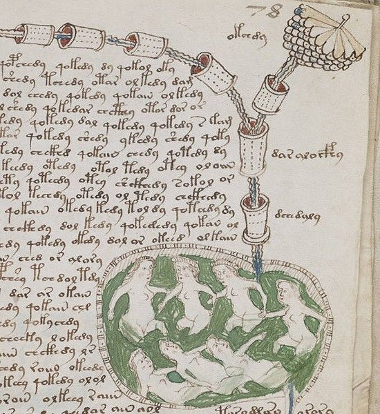 The Voynich Manuscript | Purchased by rare book dealer Wilfrid Voynich in 1912, it looks normal at first glance – a 15th century treatise on herbalism with colored ink drawings of plants. But look closer and the weirdness starts to emerge. Many of the plants pictured aren't like anything on Earth, and the text is in no known language. [To read more, click through to the link.]
