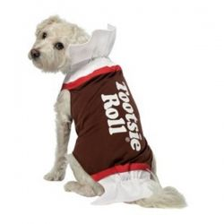 Dog Halloween Costumes | Costumes For Small and Large Dogs