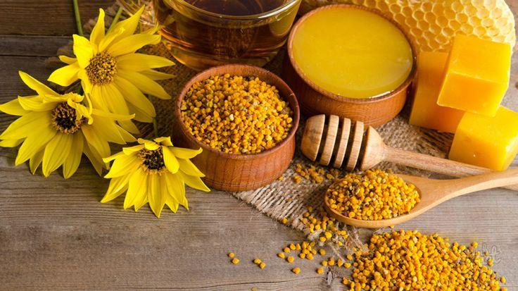 Пыльца пчелиная — полезные свойства, как принимать