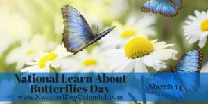 National Learn About Butterflies Day - March 14