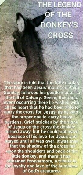 I don't believe in Jezus, but this is a beautiful story...