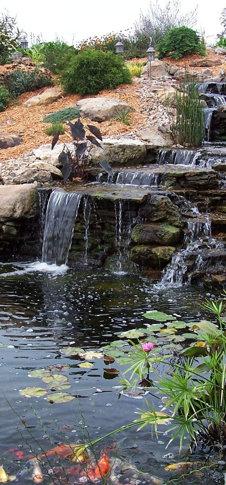 2814 best natural swimming pools ponds and water stuff for Backyard waterfall pond