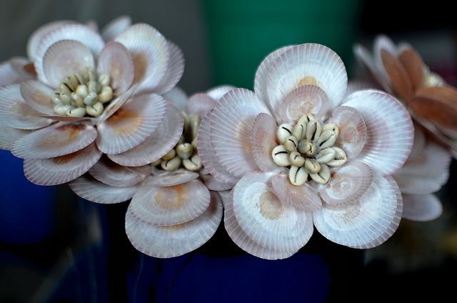 seashell flowers | Recent Photos The Commons Getty Collection Galleries World Map App ...