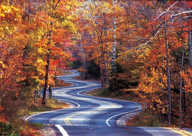 Tail of The Dragon, North Carolina in the fall. One of the most dangerous roads, I won't go on it. People come from all over, especially motorcyclists to say they drove the Tail of the dragon.
