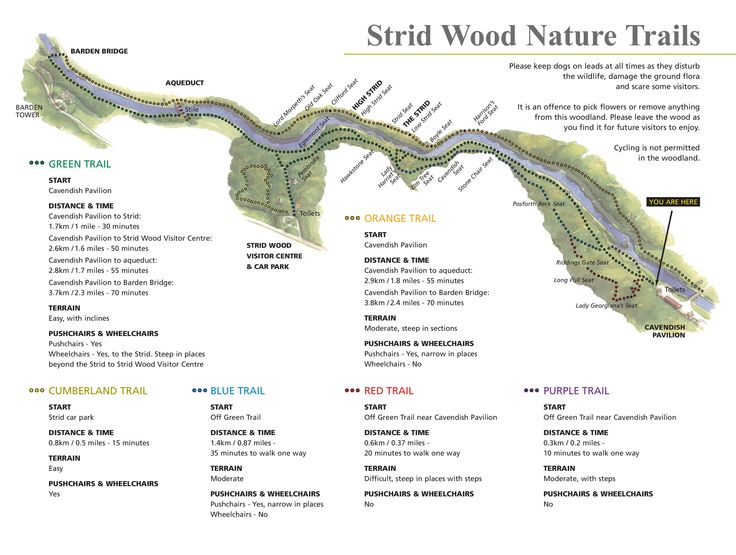 Strid Wood Nature Trails