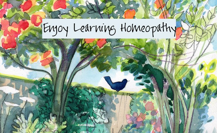 Enjoy learning homeopathy with unique free materials from Dr English. Visit www.enjoylearninghomeopathy.co.uk