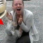 Este Perro Está Tan Emocionado De Ver a Su Ama Después de dos años, Que Se Desmaya De Alegría