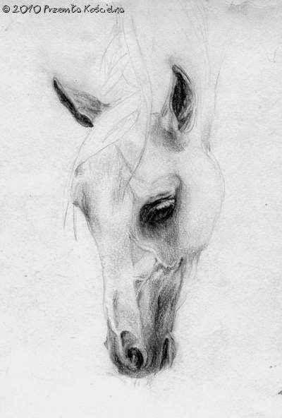 My old pencil drawing ( Michałów 1981)