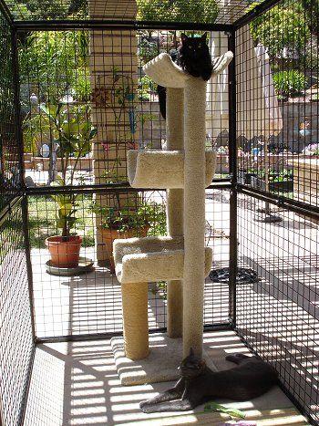 85 best cat porches images on pinterest | cat furniture, cat stuff ... - Cat Patio Ideas