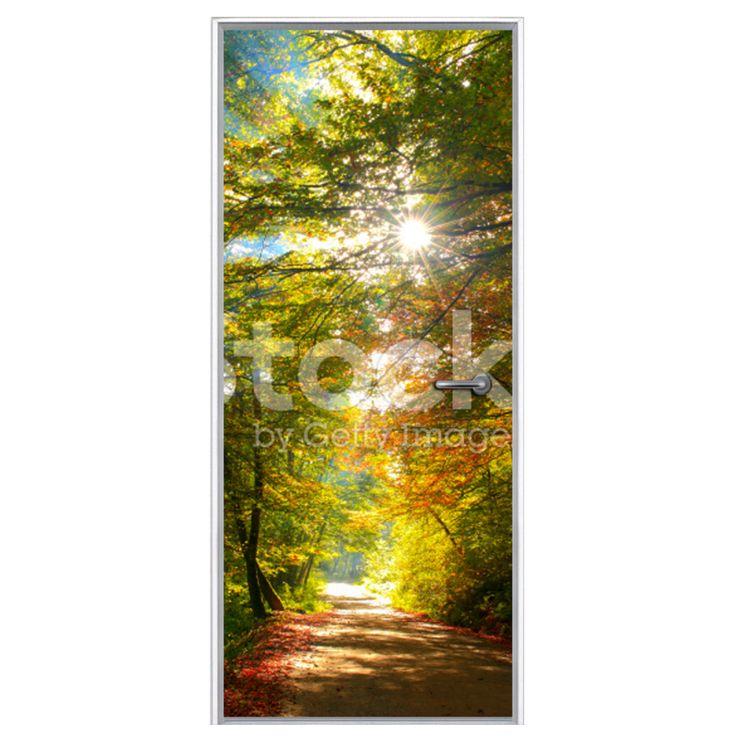 Deursticker Kleurrijk bospad per m²