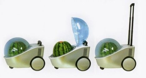 In Japan, watermelons have become a luxury food that apparently now requires a carry-on luggage-like cooler/warmer, a world's first.  First came the square watermelon creation that was introduced to the global market with the hefty price tag of $75 (€56.41) for 6.8kg. In Japan the same square watermelon can cost Â¥10,000 yen (€90).  The Japanese site Joybond.co.jp sells the single round watermelon on-the-go cooling or warming device for Â¥19,950 (€179)