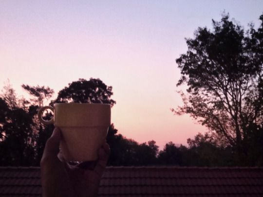 5:03 pm on the second floor of my boarding house building, i'm sitting alone in silence, looking at the sun that is gliding down reaching the other side of the world. I'm having a glass of hot tea....