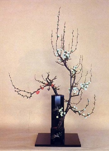 Shoka, a style of Ikebana (art of Japanese flower arranging)